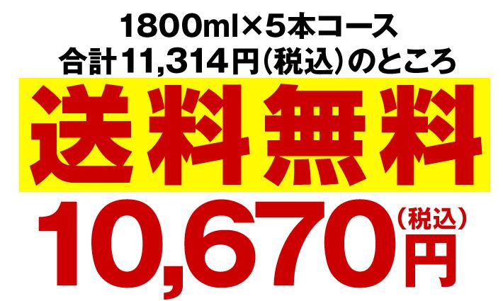 1800nl×5本コース送料無料10,670円